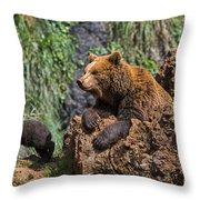 Eurasian Brown Bear 8 Throw Pillow