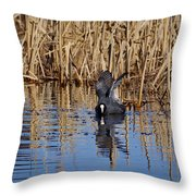 Eurasian Coot And The Bubles Throw Pillow