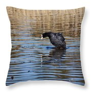 Eurasian Coot Throw Pillow