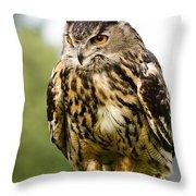 Eurasian Eagle Owl On Log Throw Pillow