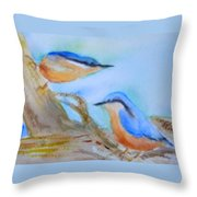 Eurasian Nuthatch Throw Pillow