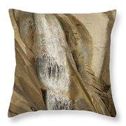 Eurobin Falls Victoria Throw Pillow
