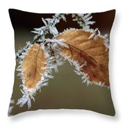European Beech Leaves With Frost Throw Pillow