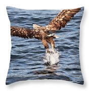 European Fishing Sea Eagle 2 Throw Pillow