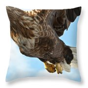 European Flying Sea Eagle 2 Throw Pillow