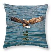 European Flying Sea Eagle 6 Throw Pillow