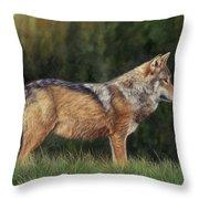 European Grey Wolf Throw Pillow