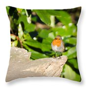 European Robin Throw Pillow