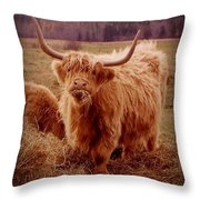 Even Cape Breton Cattle Have Character Throw Pillow