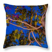 Evening Blues Throw Pillow