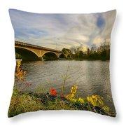 Evening Crossing Throw Pillow