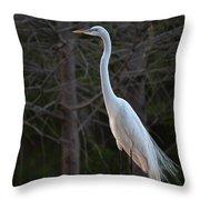Evening Egret 2 Vertical Throw Pillow