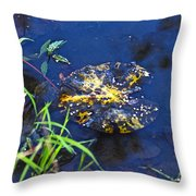 Evening Encloses The Aging Lily Pad Throw Pillow