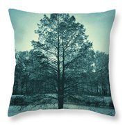 Evening Falls Throw Pillow