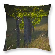 Evening Hunt Throw Pillow