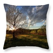 Evening In The Park Throw Pillow
