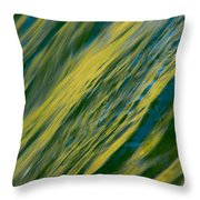 Evening Is Coming Throw Pillow