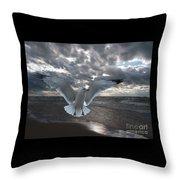 Evening Landing Throw Pillow