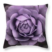 Evening Lavender Rose Flower Throw Pillow