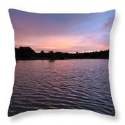 Evening Light Amazon River Throw Pillow