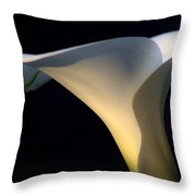 Evening Lily Throw Pillow