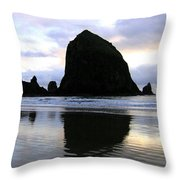 Evening Luster Throw Pillow by Will Borden