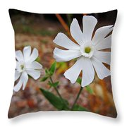 Evening Lychnis Throw Pillow