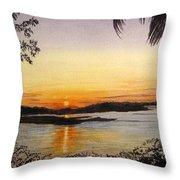Evening Marsh Throw Pillow