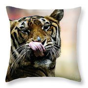 Evening Meal Throw Pillow