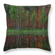 Evening Pond Throw Pillow