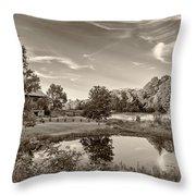 Evening Pond Sepia Throw Pillow