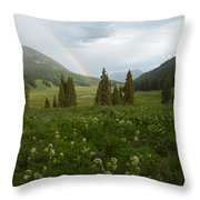 Evening Rainbow In The Rocky Mountains Throw Pillow
