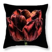 Evening Red Throw Pillow