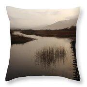 Evening River Scene Throw Pillow