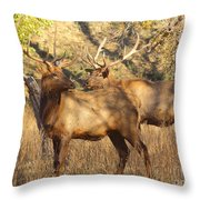 Evening Sets On The Elk Throw Pillow