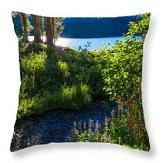 Evening Shadows At Lake George Throw Pillow