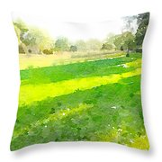 Evening Shadows Throw Pillow