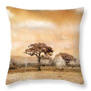 Evening Showers Throw Pillow