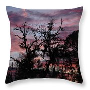 Evening Sky Color Throw Pillow by Ella Char