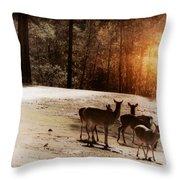 Evening Social  Throw Pillow
