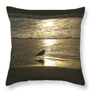 Evening Stroll For One Throw Pillow