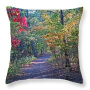 Evening Walk Thru The Woods Throw Pillow