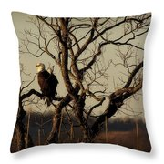 Evening Watch Throw Pillow