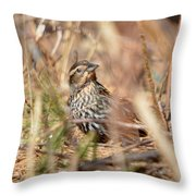 Ever Attentive Throw Pillow