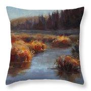 Ever Flowing Alaskan Creek In Autumn Throw Pillow