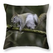 Ever Get The Itch Throw Pillow