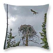 Ever Graceful Vertical Throw Pillow