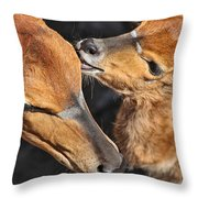 Ever Love Throw Pillow