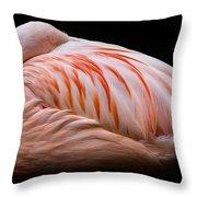 Ever Vigilant Throw Pillow