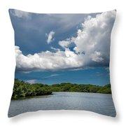 Everglades 0254 Throw Pillow